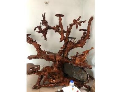 Gốc kiểng gỗ hương 100% 532