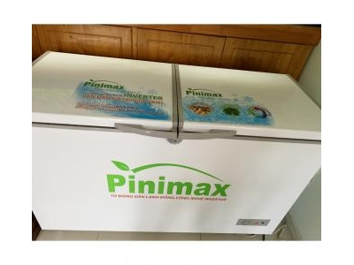 Tủ đông Pinimax 872
