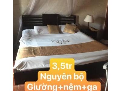 Giường khách sạn SP000219