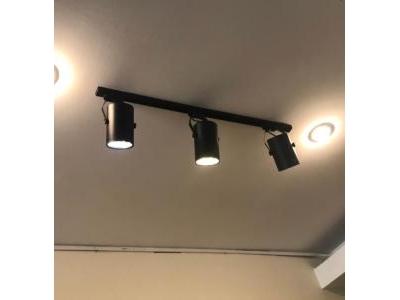 Bộ đèn led rọi ray mắt trâu 12w SP000625